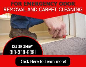 About Us | 310-359-6381 | Carpet Cleaning Culver City, CA